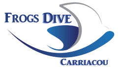 Dive Carriacou Scuba Snorkel Kayak
